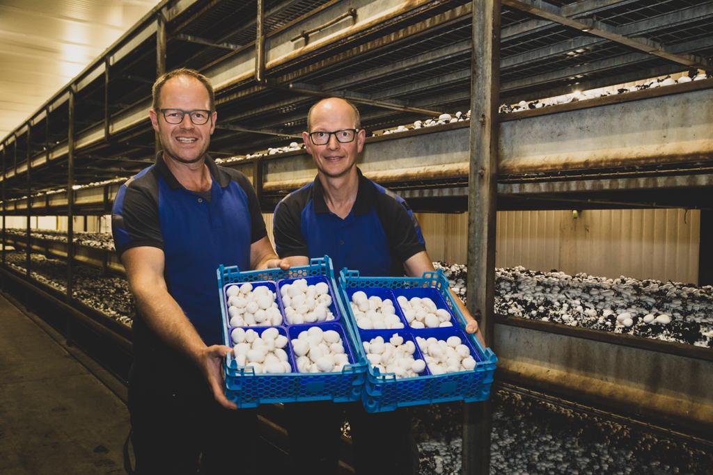 Bart Bovee & Martien Bovee in de paddenstoelenkwekerij